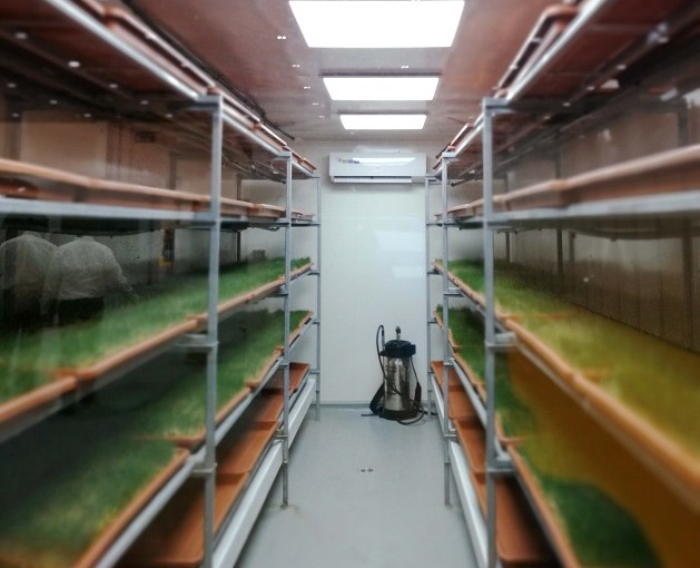 Containerised Hydroponic Farming as a way forward